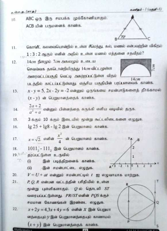 mathematics grade 11 past papers custom paper service